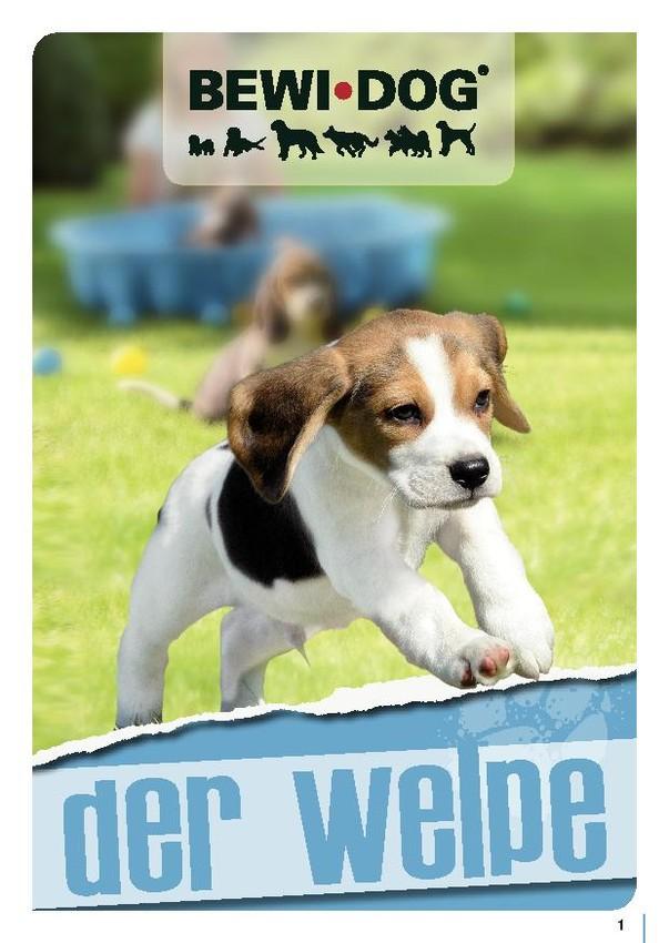 BEWI DOG® Broschüren