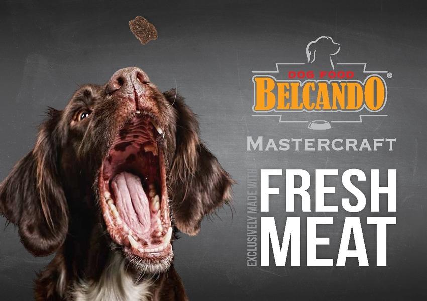 Prospekt BELCANDO® Mastercraft