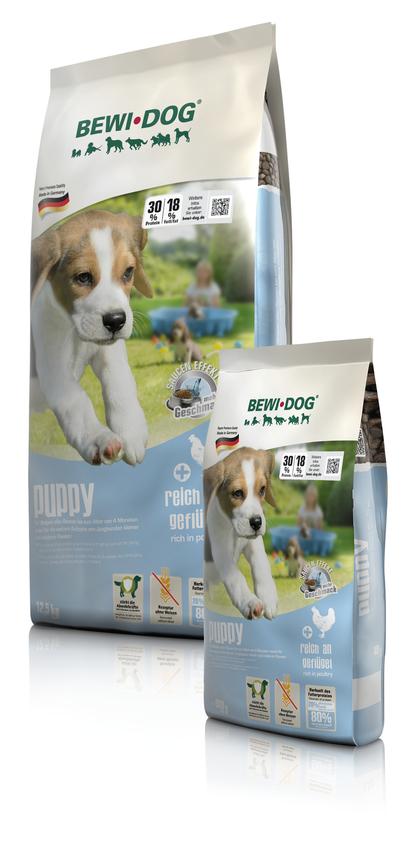 BEWI DOG® puppy
