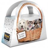 BELCANDO® Puppy-Box